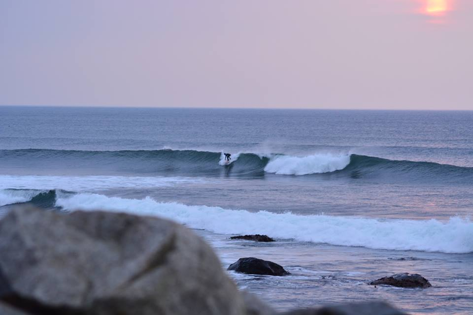 Blogginnlegg om SURF -
