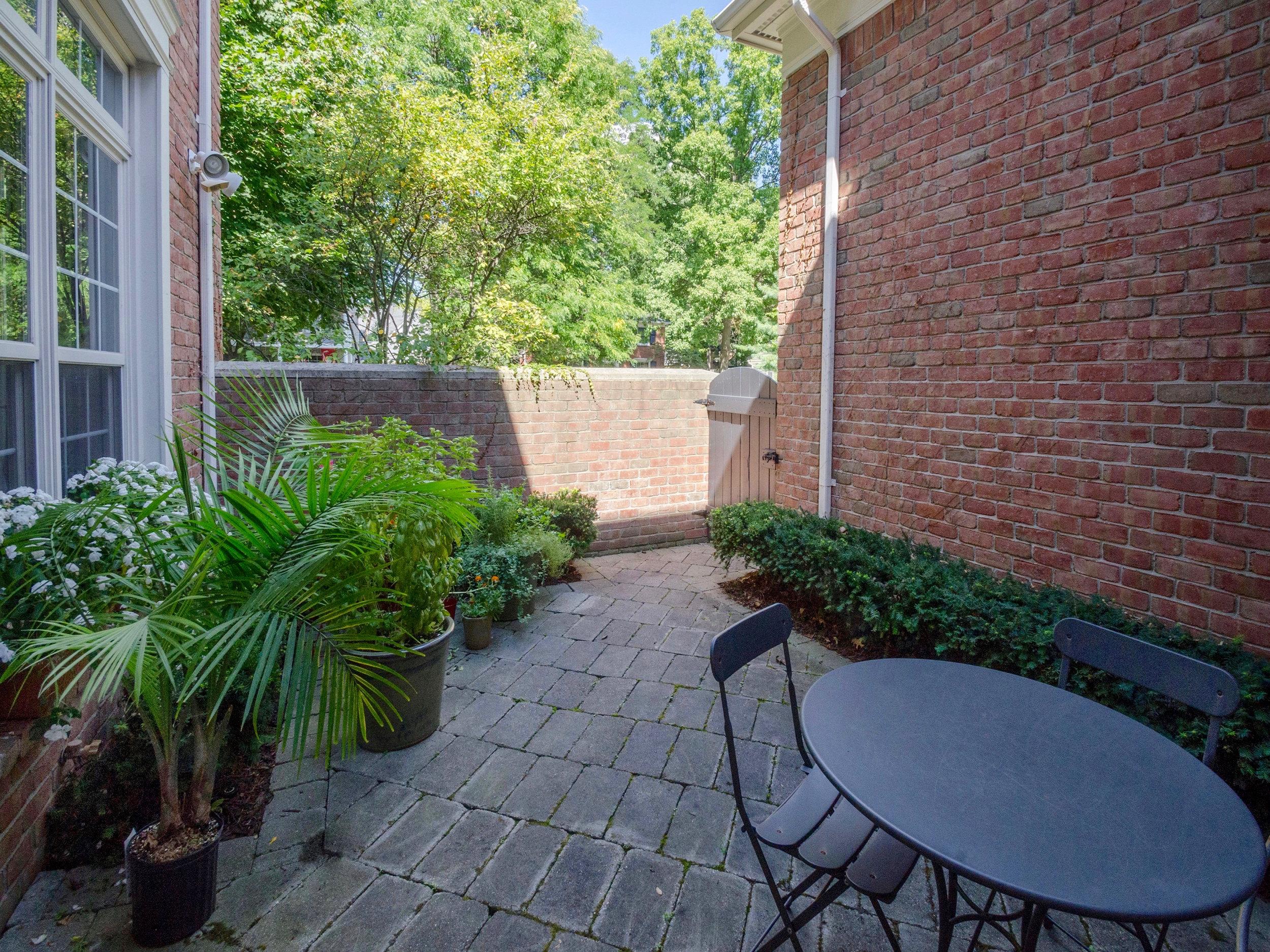 courtyard_plants.jpg