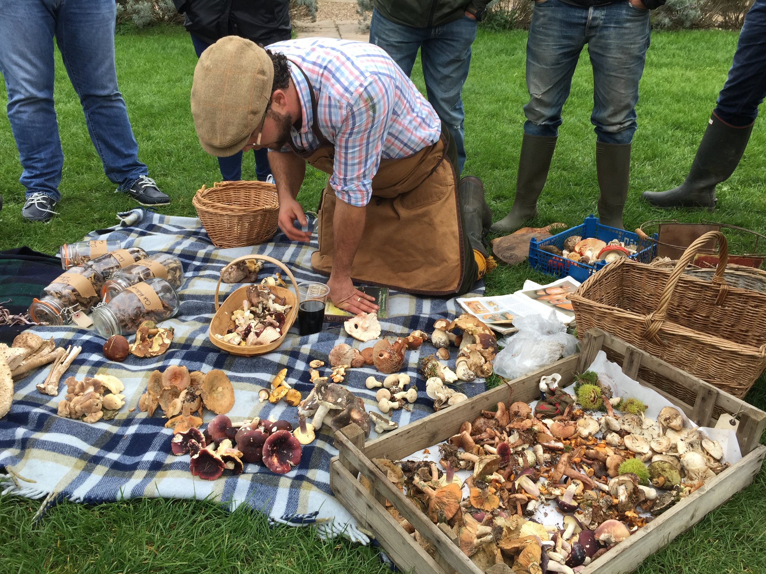 the dancing goat foraging day with lee moreton