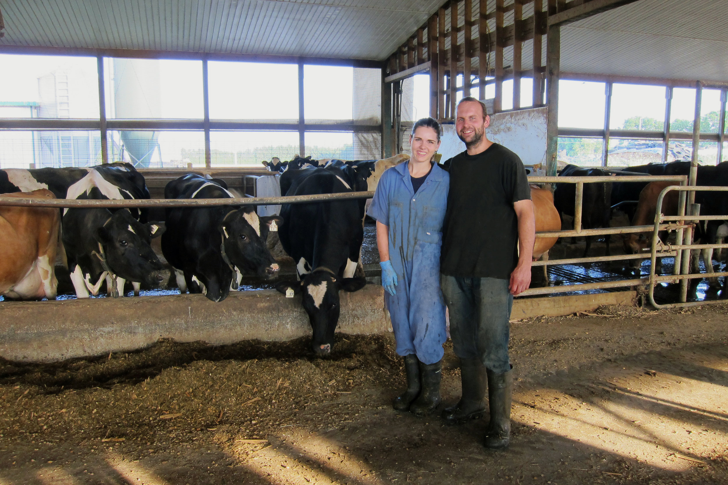 Bart and Laura Klessens have been feeding a Leafy Corn Silage Hybrid for three seasons on their 75 cow dairy in Southern Ontario. Milk production is right where they want it to be.