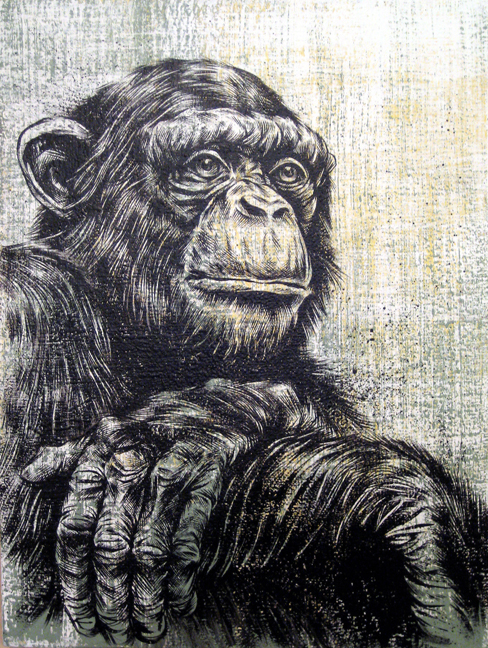 portrait-of-a-chimpanzee.jpg