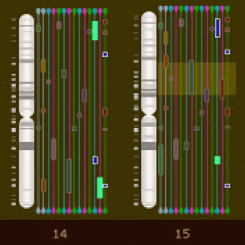 Affymetrix Chromosome Console:  Desktop Application