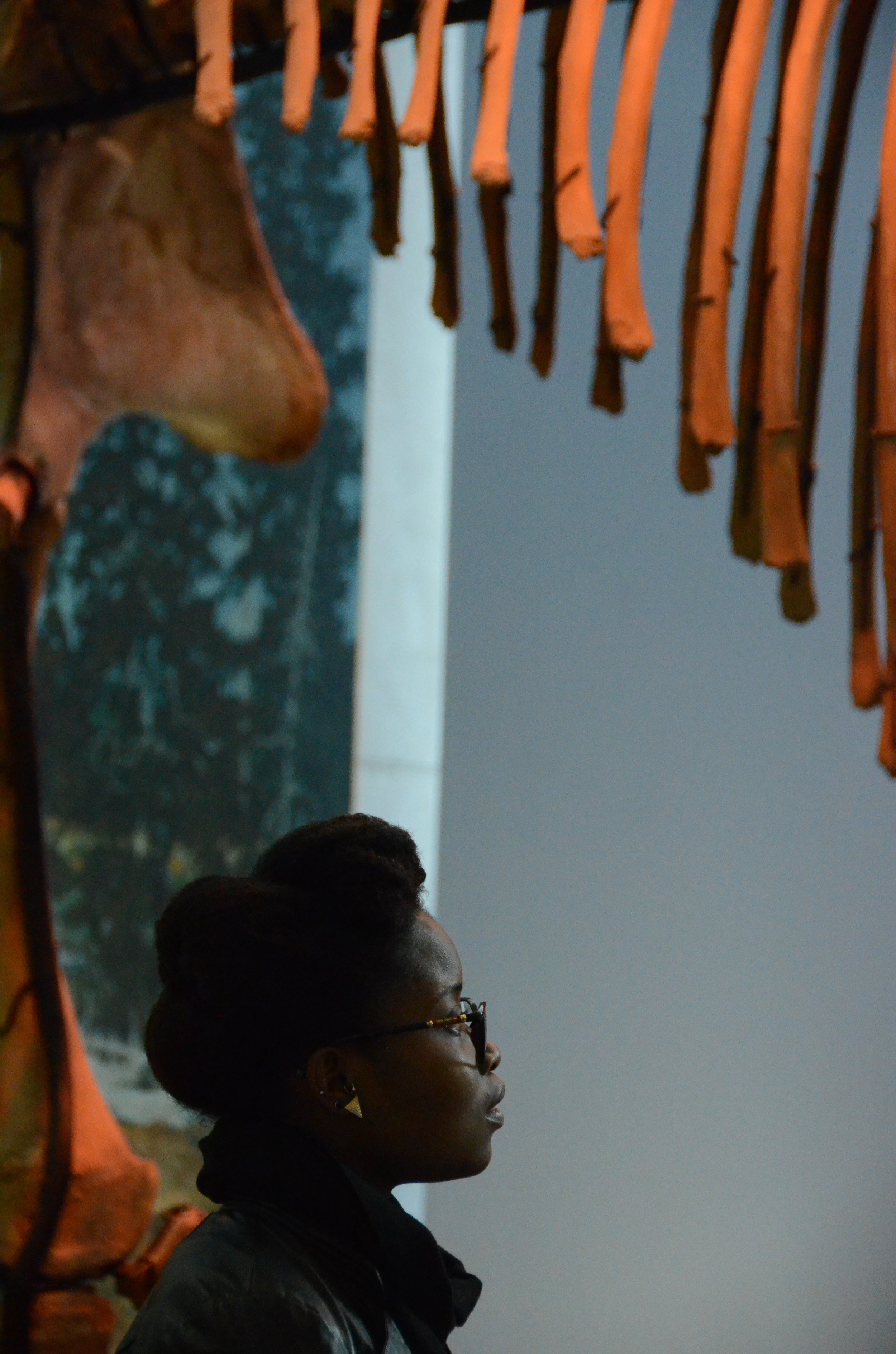 Student Araya ('15) explores the Museum of the Earth