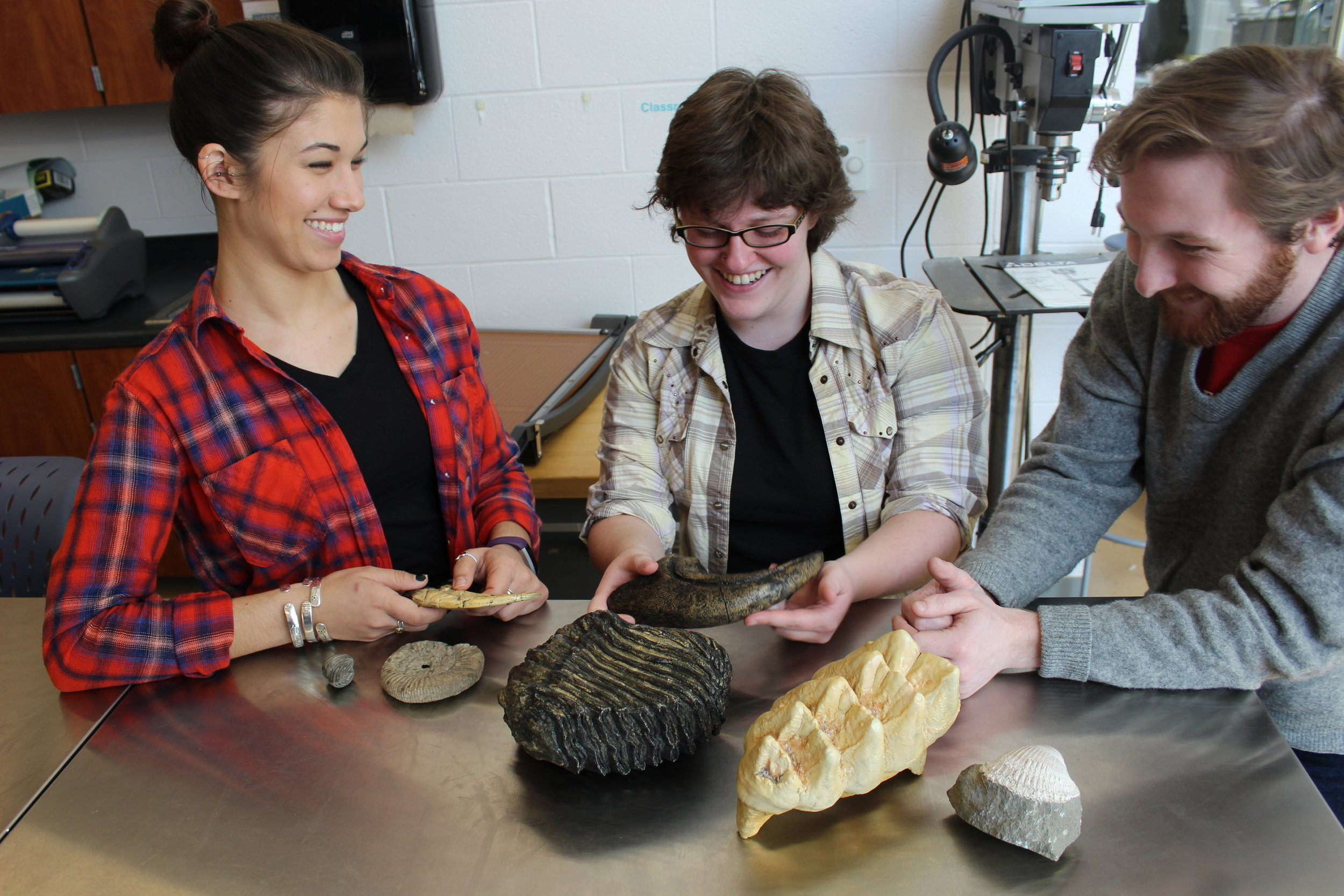 The science teaching collection includes casts of fossils