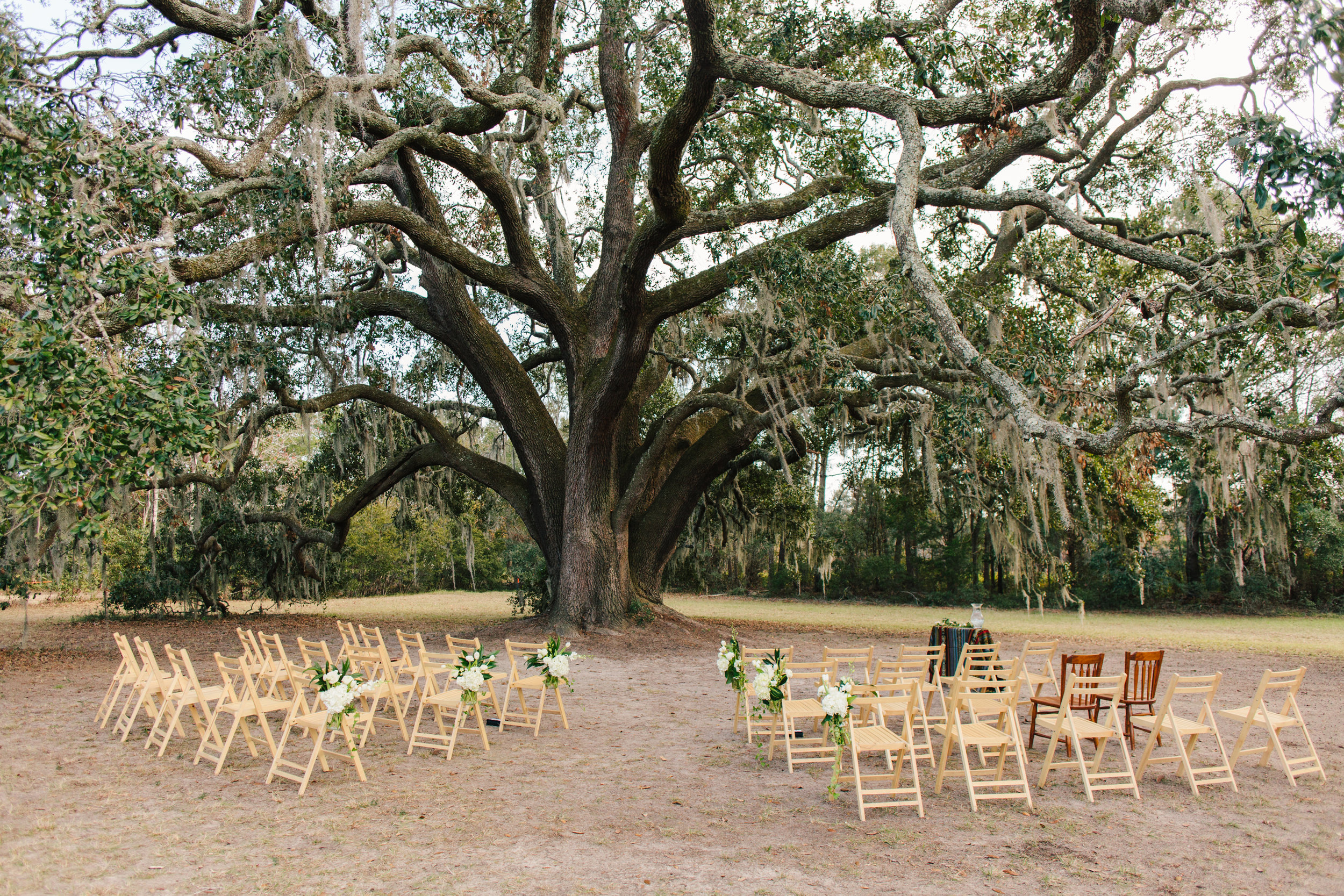 charleston tea plantation wedding-68.jpg
