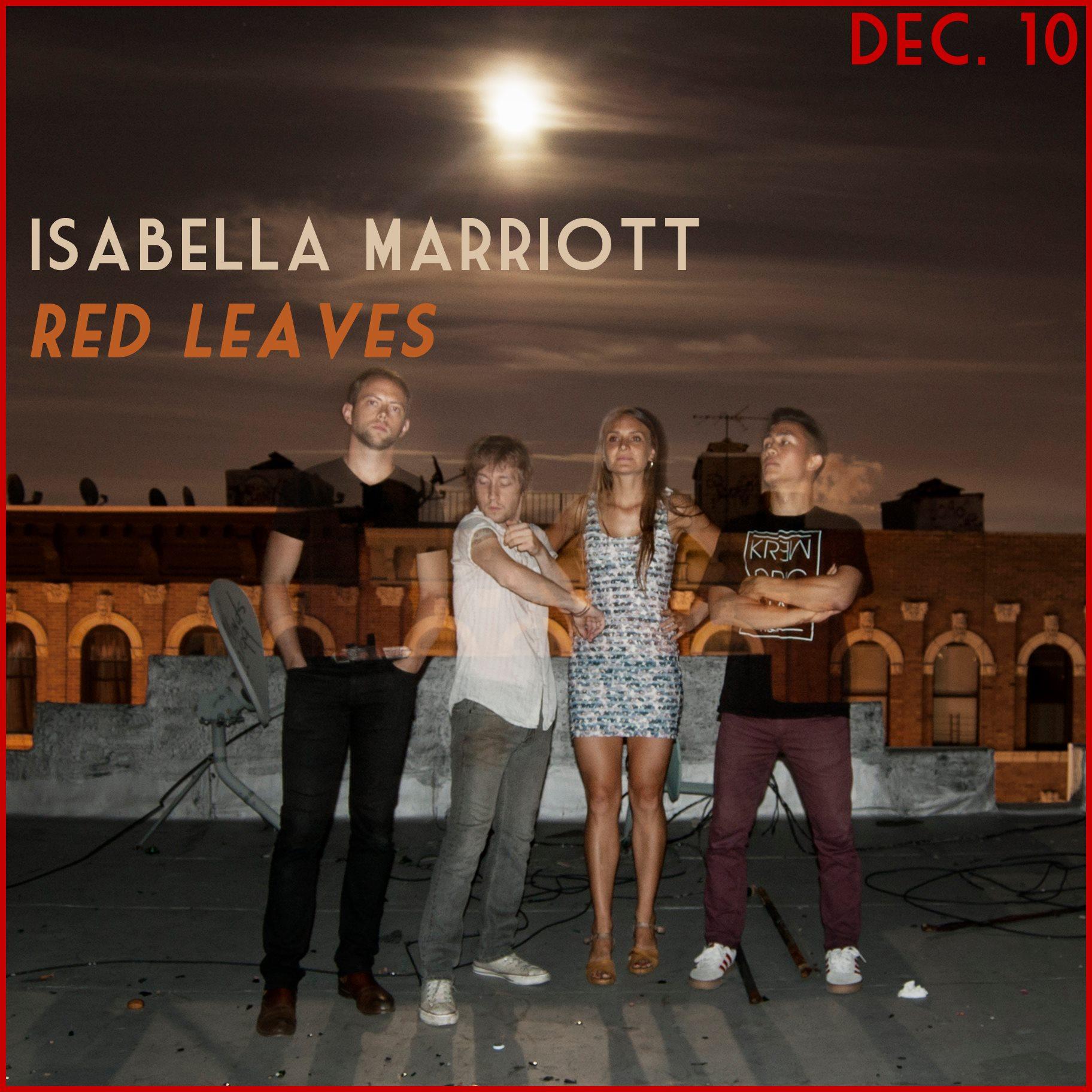 Red Leaves Dec 10 2014.jpg