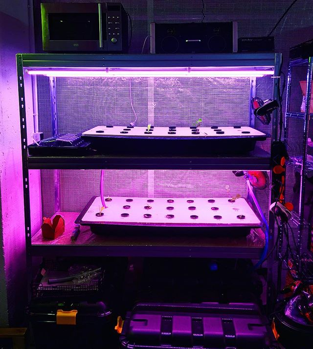 All great things have small beginnings. We spotted this @plus.farm in #Paris while visiting new #verticalfarming startup 👉🏼Wesh-Grow.com 👈🏽 Build your own vertical farm using our DIY instructions at www.plus.farm 🌱🌱🌱