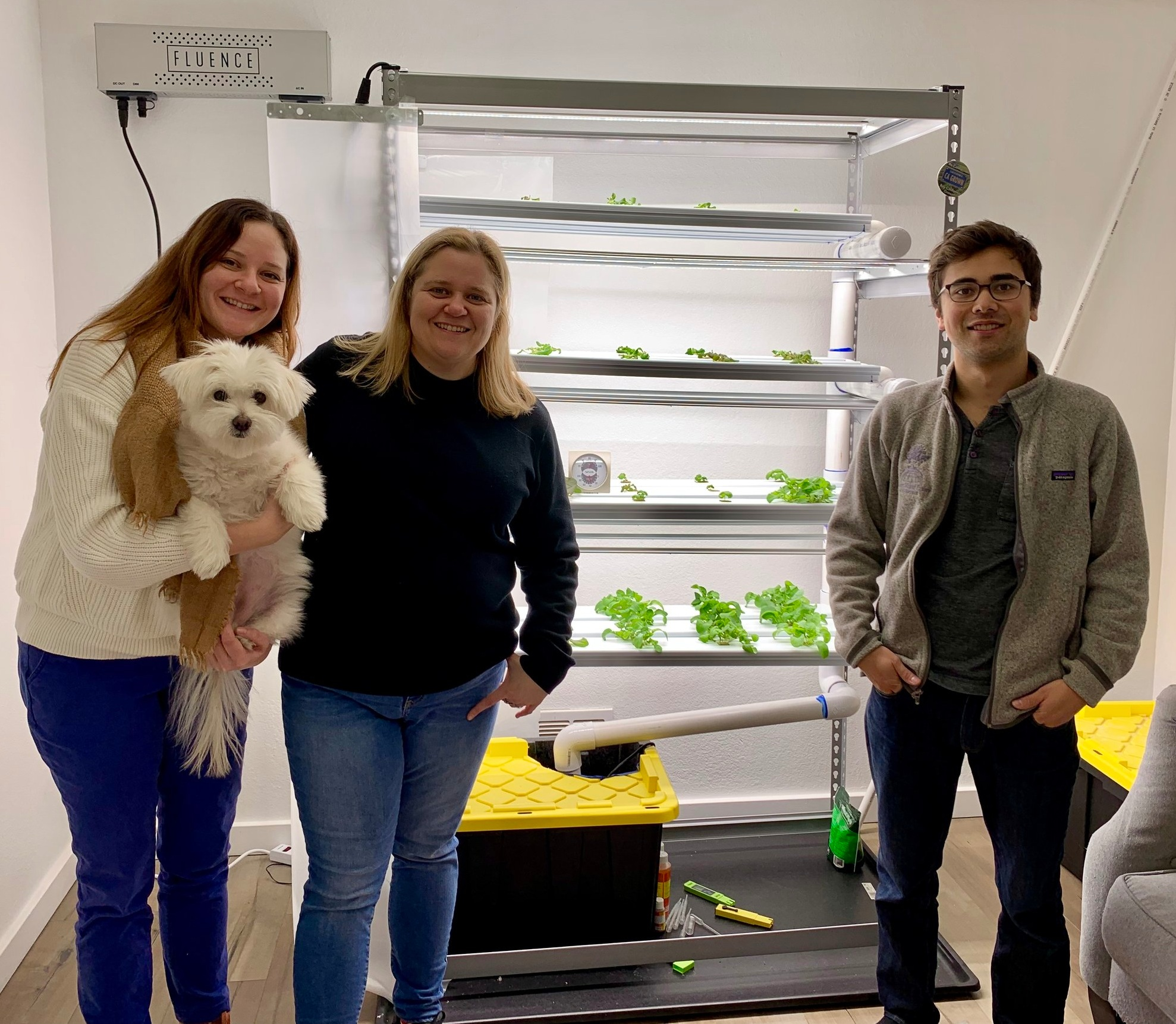 Dr. Greenhouse, Inc. , specializes in controlled environment agriculture, engineering HVAC systems for indoor farms. So, when they moved into their new office last summer, they decided to build a +Farm for educational purposes, for good Feng Shui, for team-building, and for the promotion of our services.