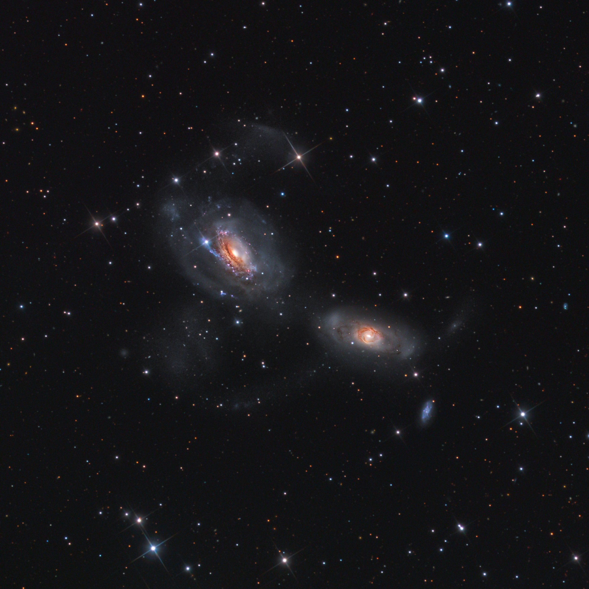 NGC 3166 & 3169 (Stellar Winds Observatory -DSNM)
