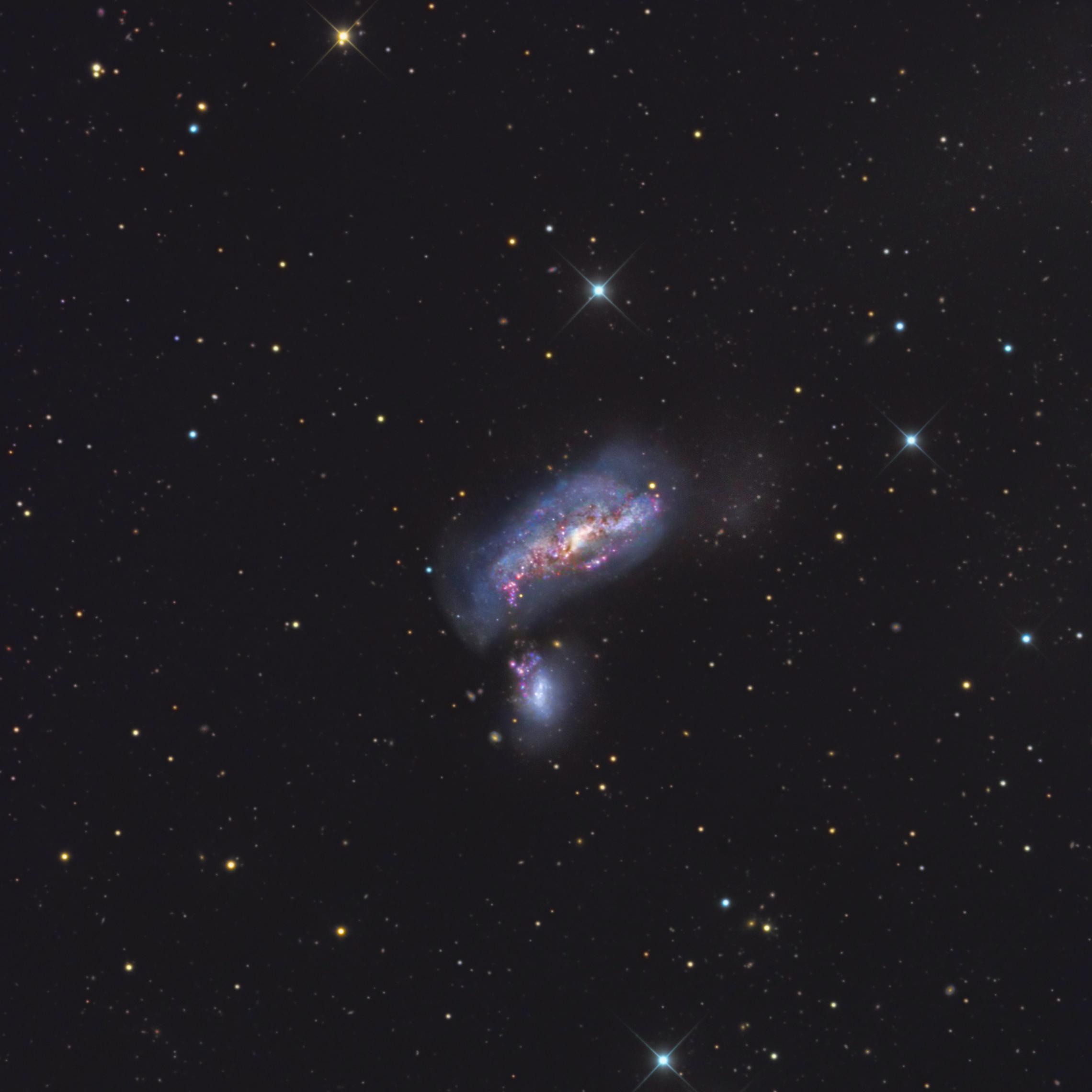 NGC 4490, Cocoon Galaxy