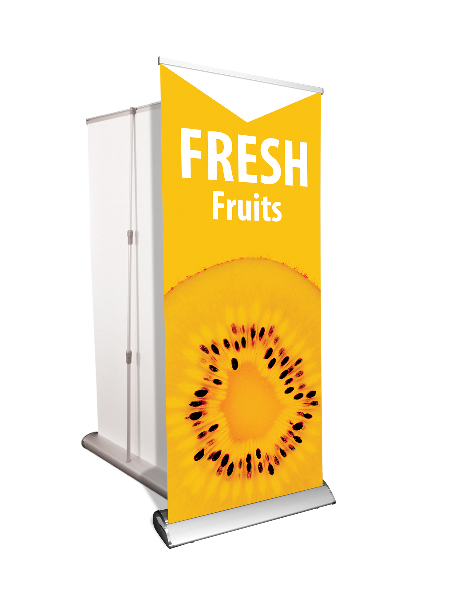 Banner Stand - Pull up style