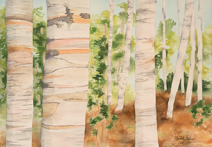 Rainbow Birches III