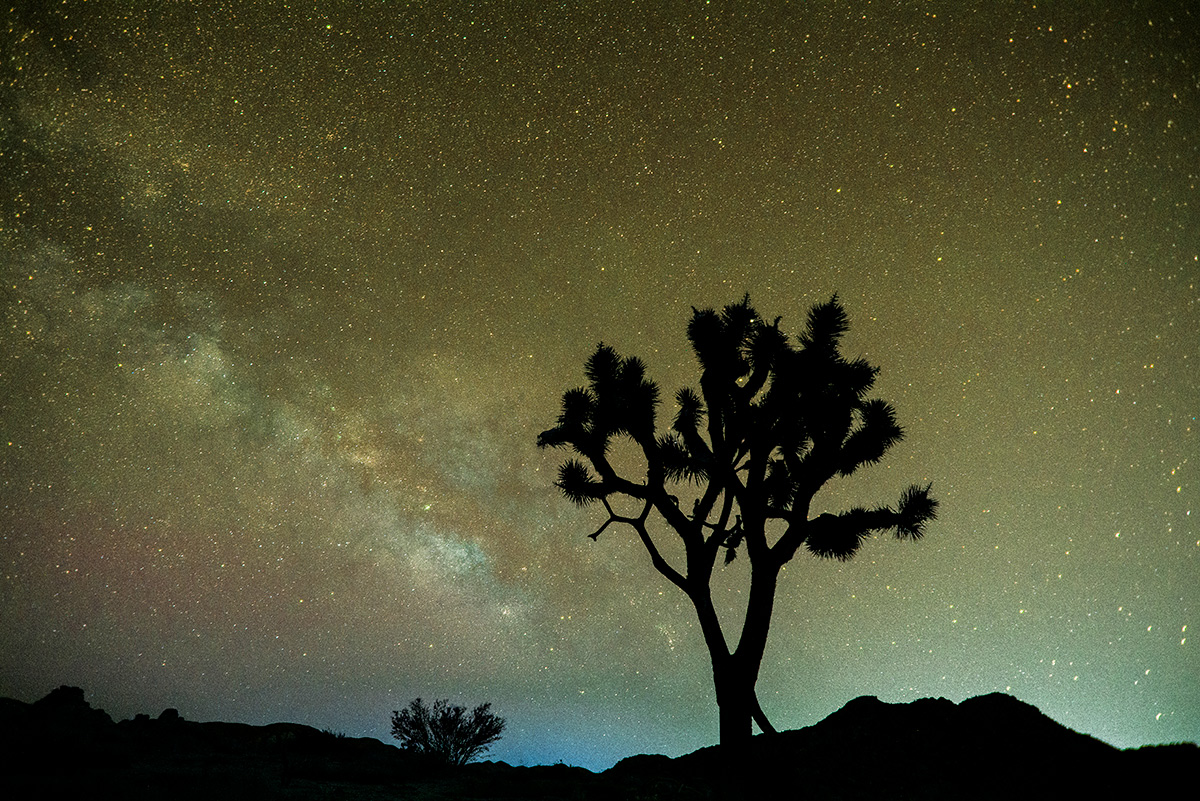 Milkyway and Stargazing at CasaPlutonia