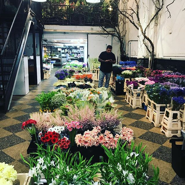 All that's well blooms in the flower market. Happy Saturday! . . . . . #lizbickleystudios #nature #flowers #events #eventplanning #love #summer #summertime  #newyork  #partyplanning #eventplanners #nycevents #nyc #events #colors #blooms #summerblooms #partyplanning
