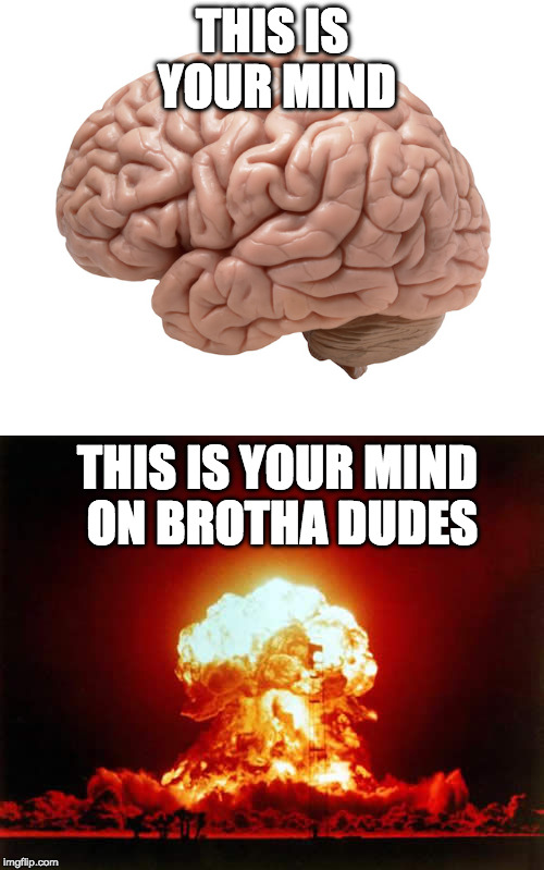 this is your brain.jpg