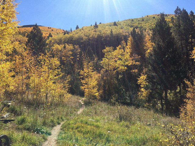 Big Tesuque Trail, Santa Fe-Photo by Eric Cook, Mountain Bike New Mexico