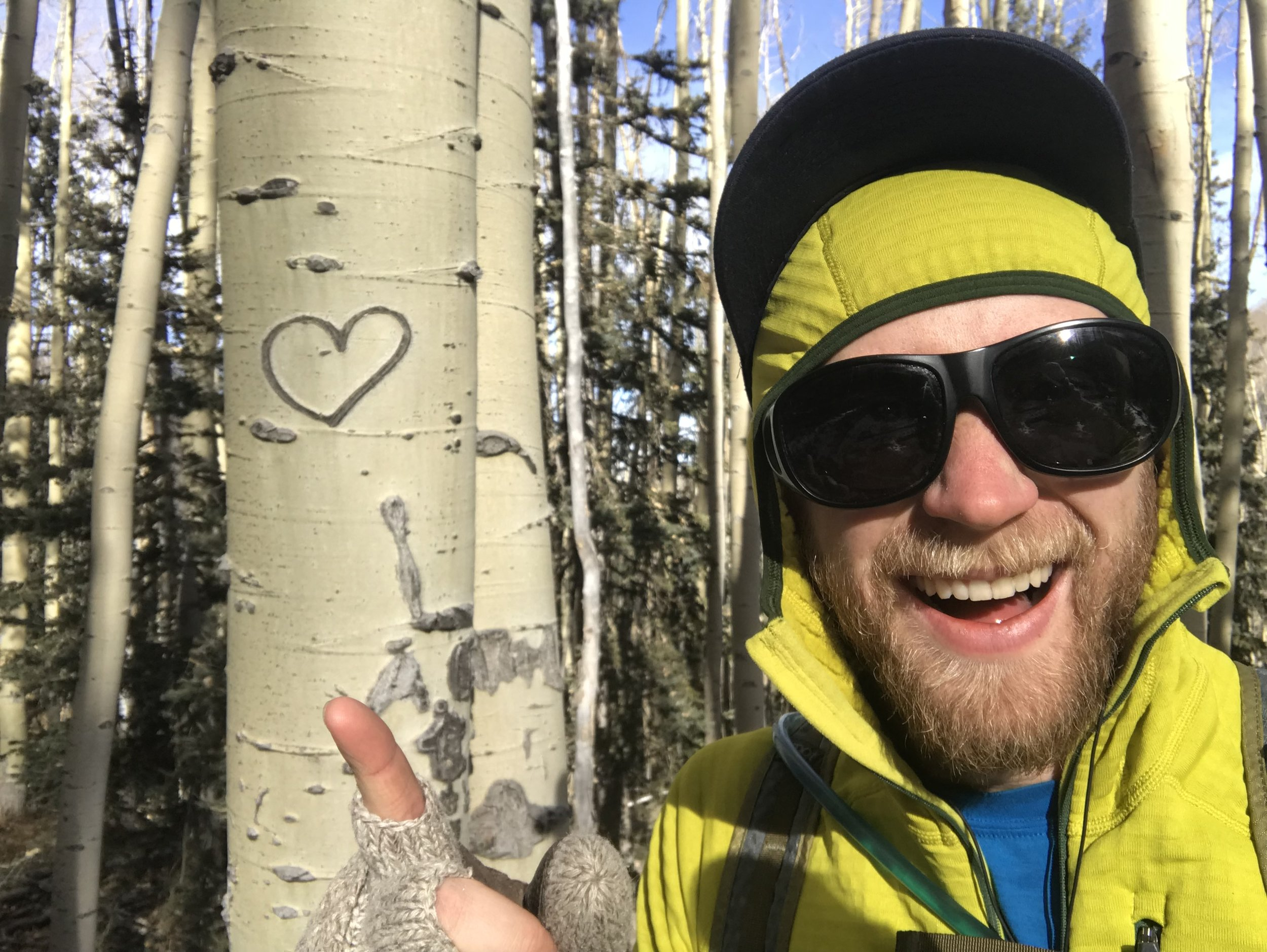 You can tell its an aspen because of the way it is! Neat!