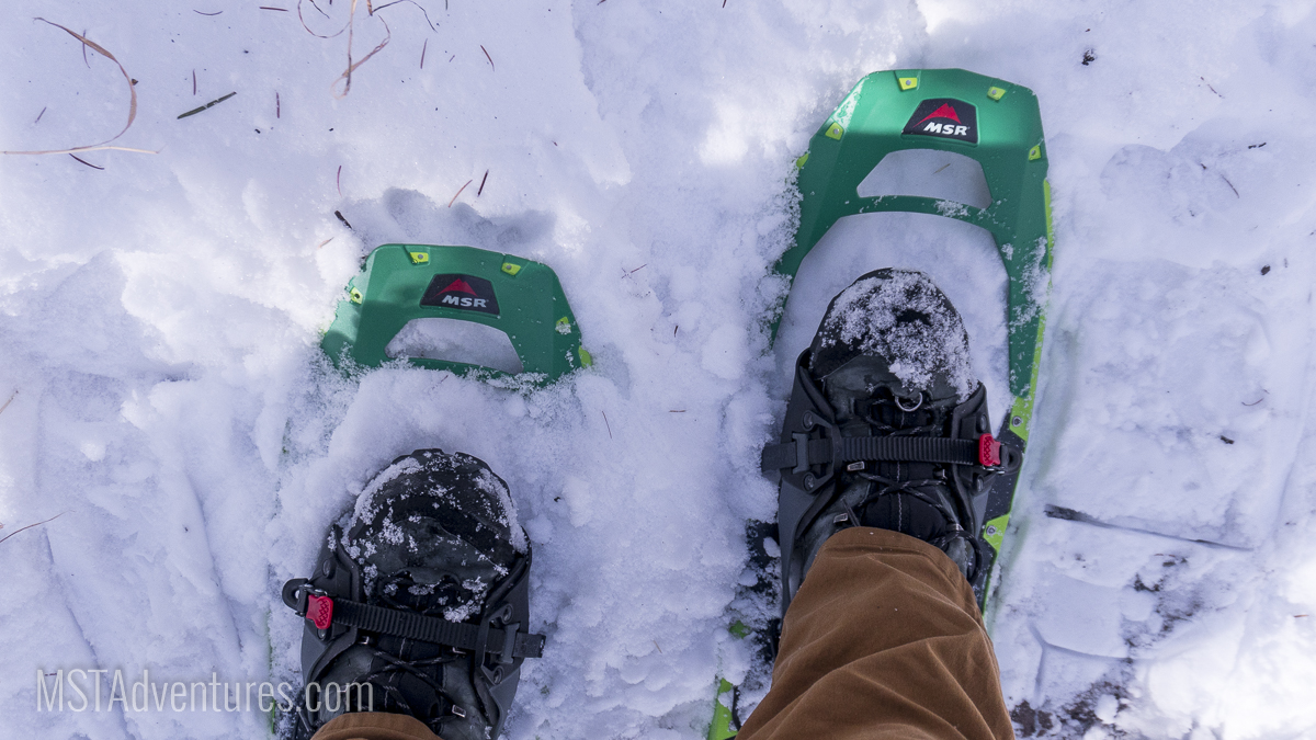 Just enough snow to test out the new 'shoes!