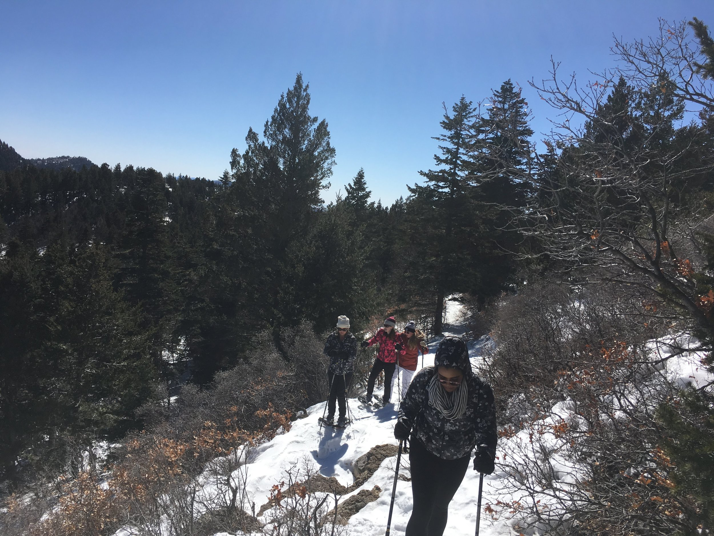 A fun snowshoe trek is well worth the work