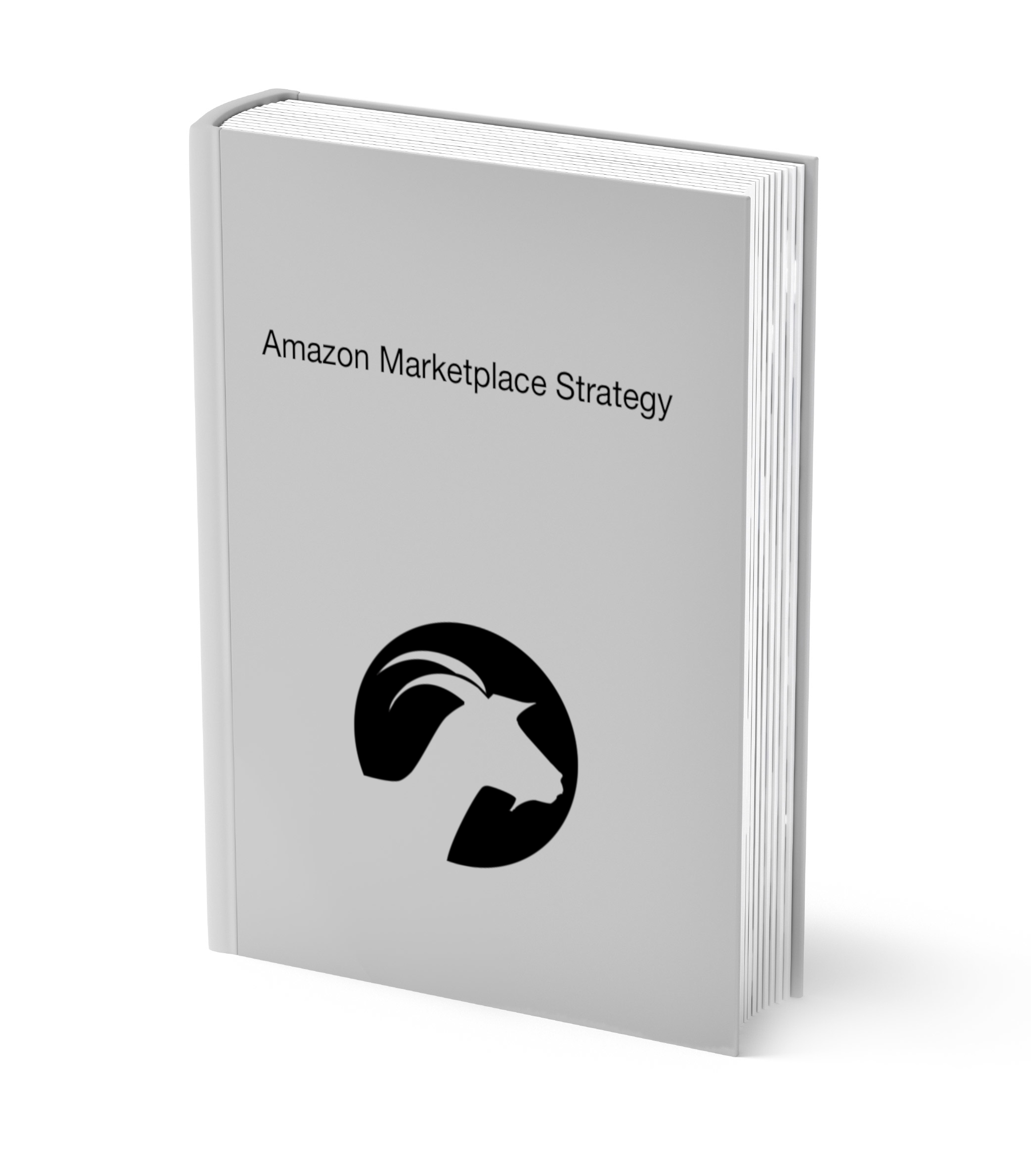 Amazon Marketplace Strategy Book Cover.jpg