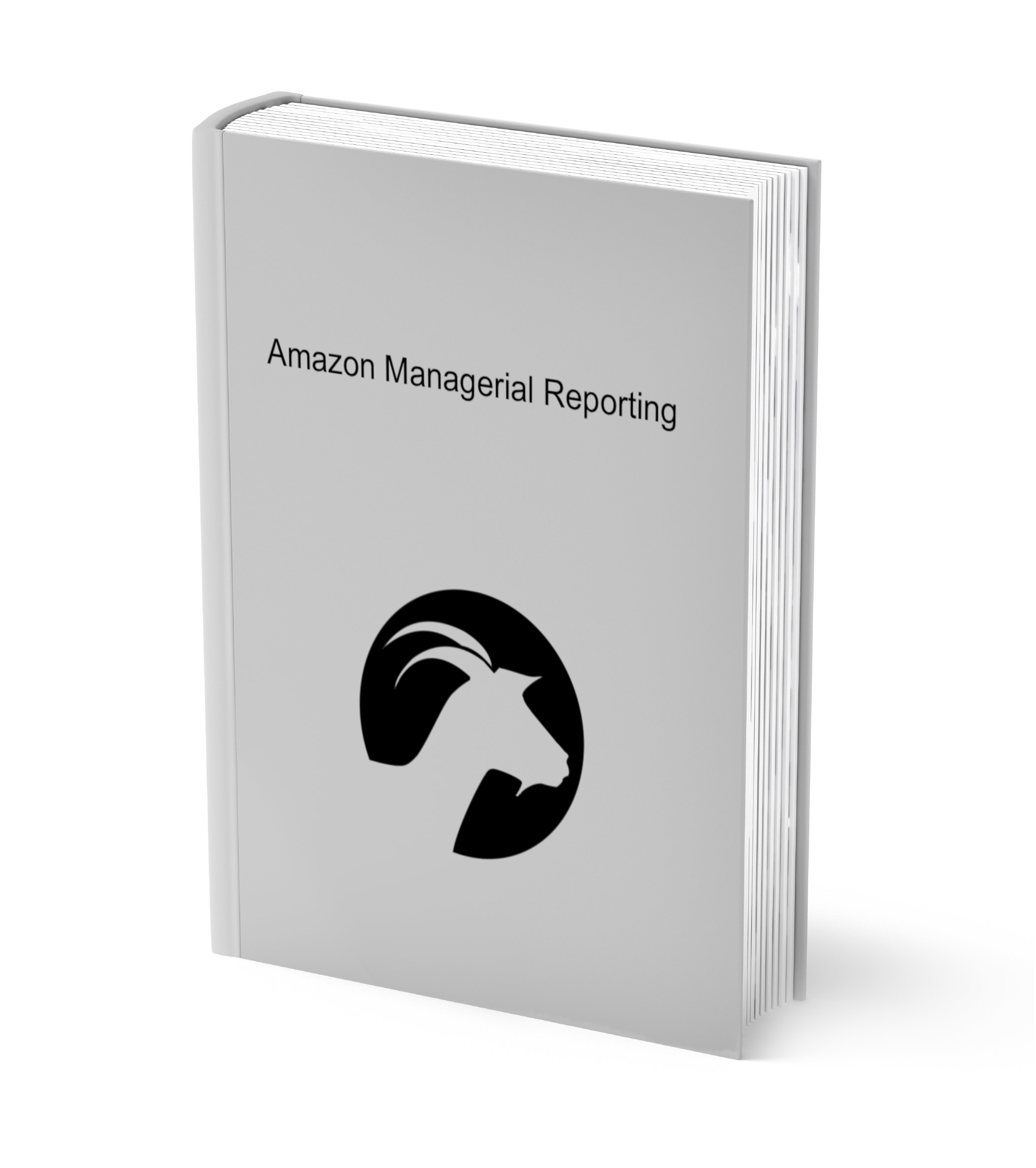Amazon Managerial Reporting Book Cover.jpg