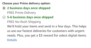 "Delivery options showing 2 business days ""once shipped"""