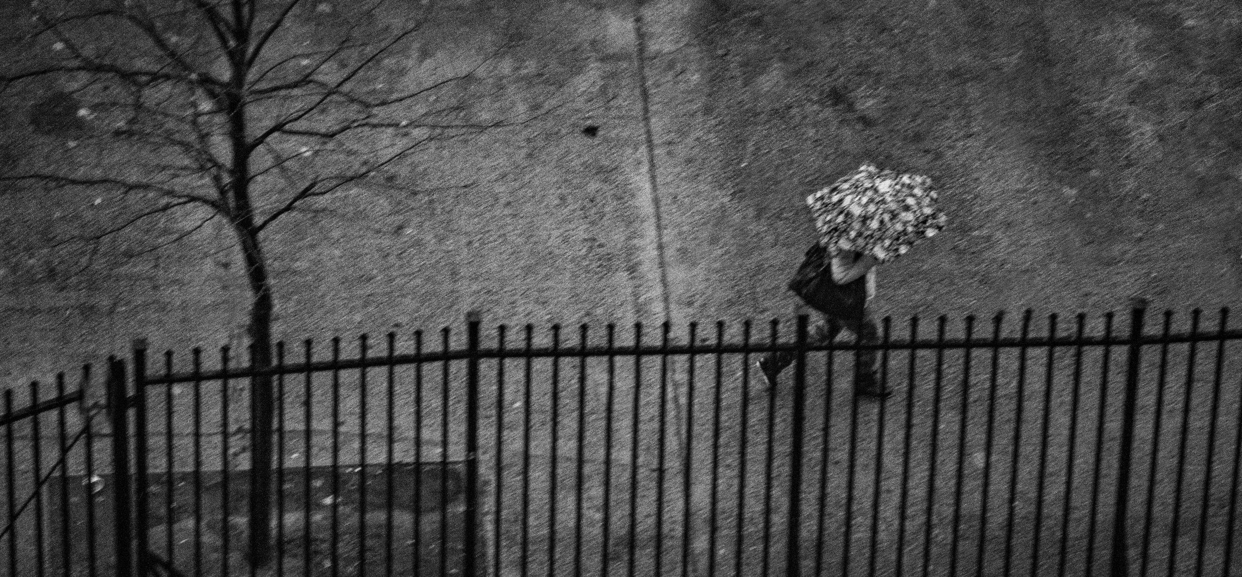 rainy day #1.JPG