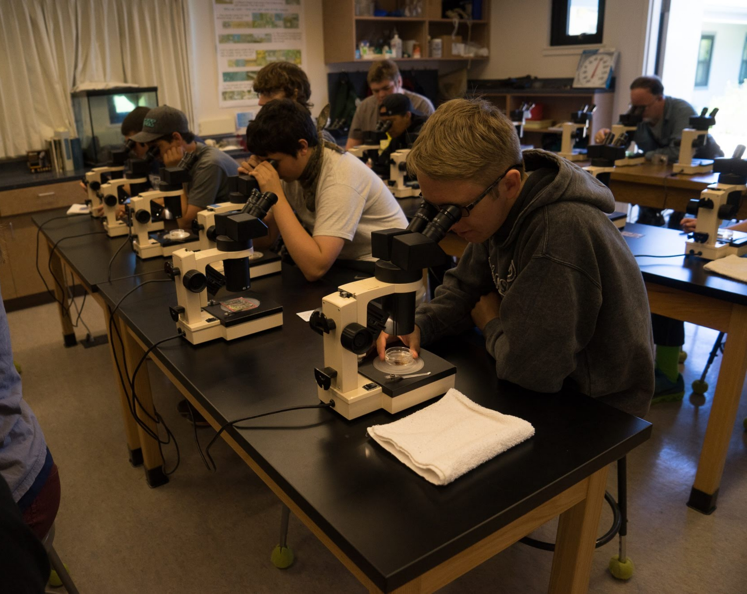 Students using microscopes during science class