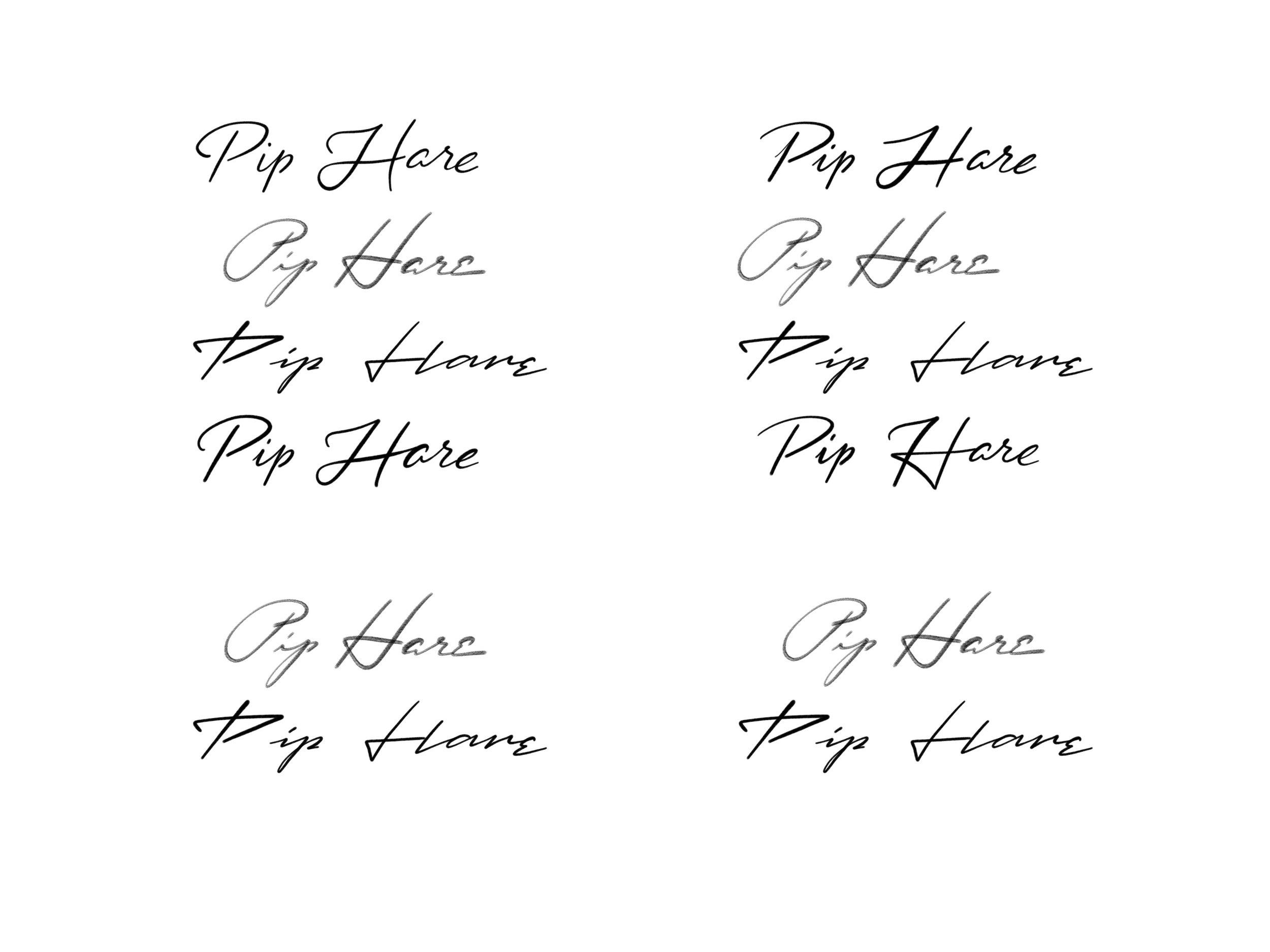 Pete Adams Design Pip Hare Ocean Racing Vendee Logo Concepts.jpg