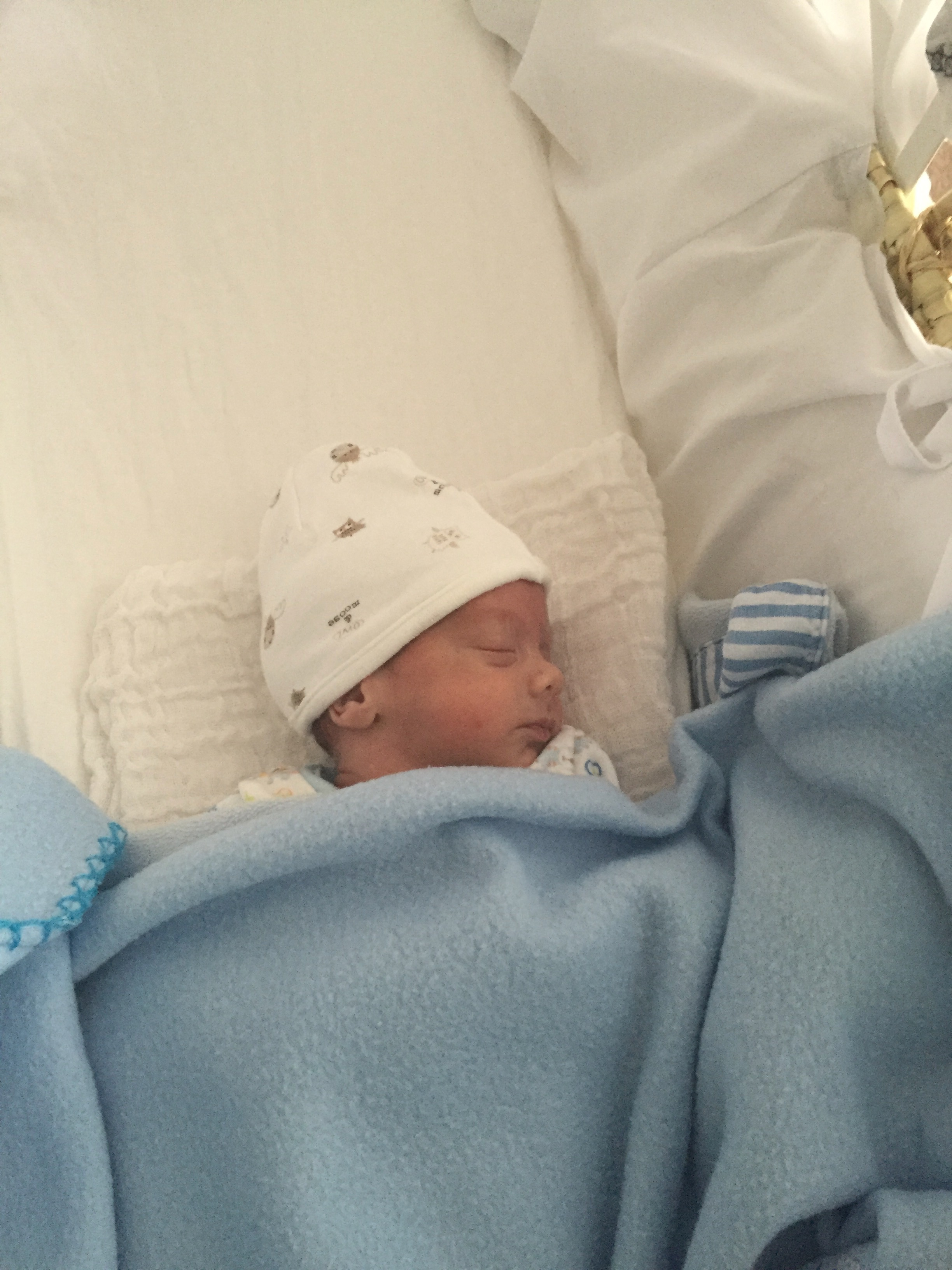 Sam in his moses basket at home