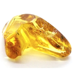 True Fossilized Amber Resin