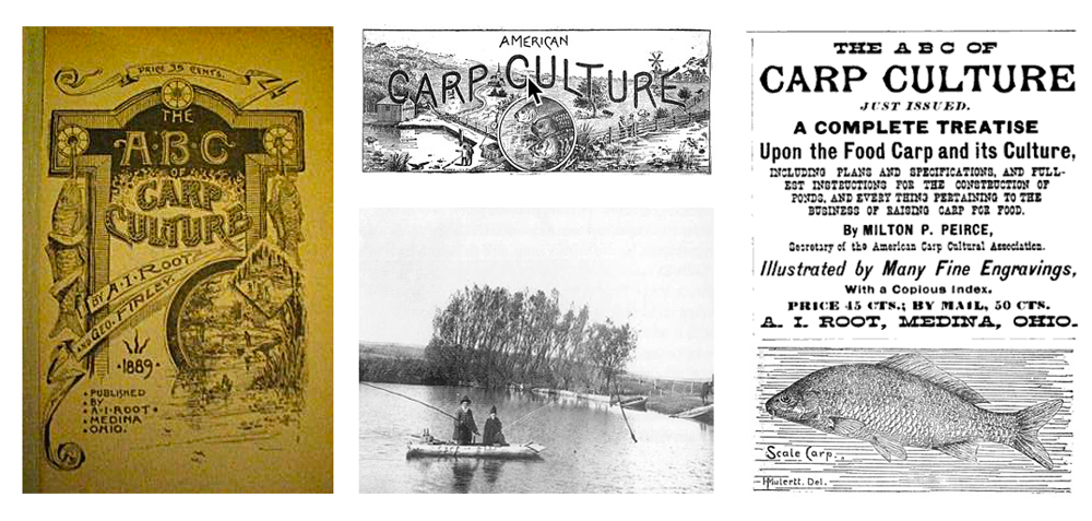 Various publications of the time promoting the advantages of raising carp.