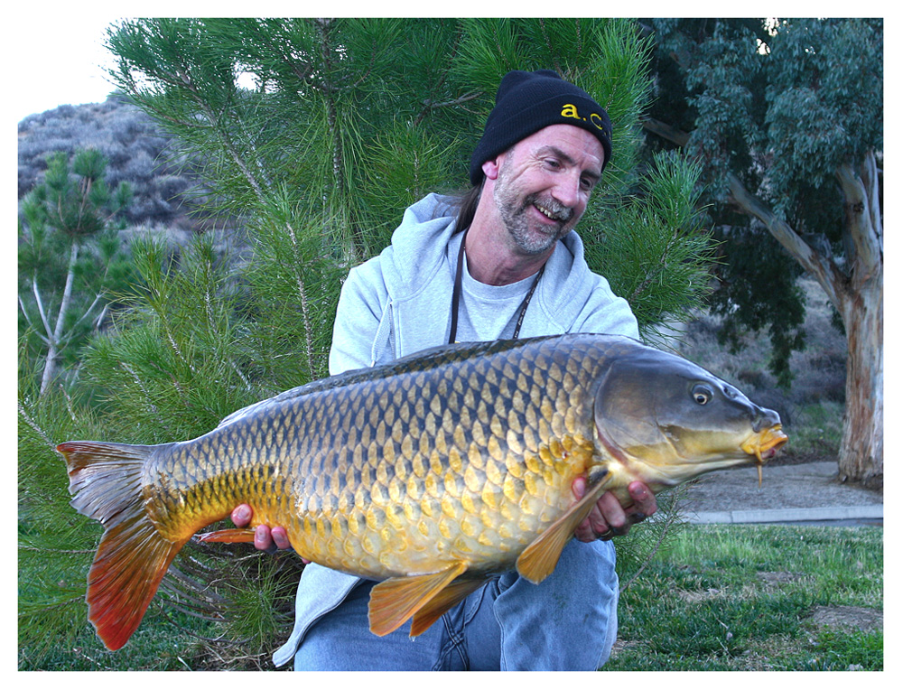 Nice-Common-Feature-Baiting-72ppi.jpg