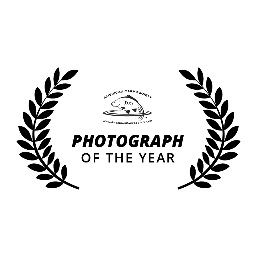 Photo-of-the-year.jpg