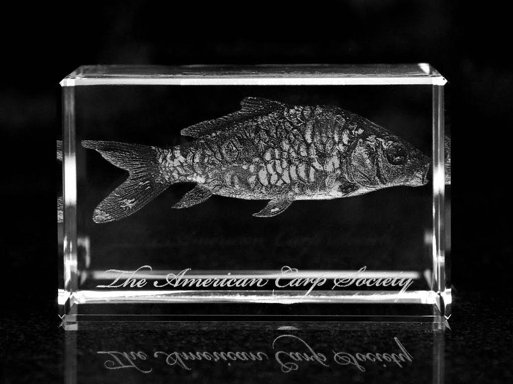 Engraved Crystal Award -