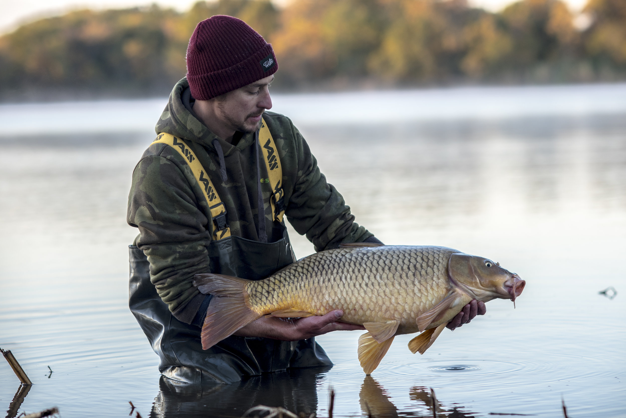 ANDREW fish WATER RELEASE 4.jpg