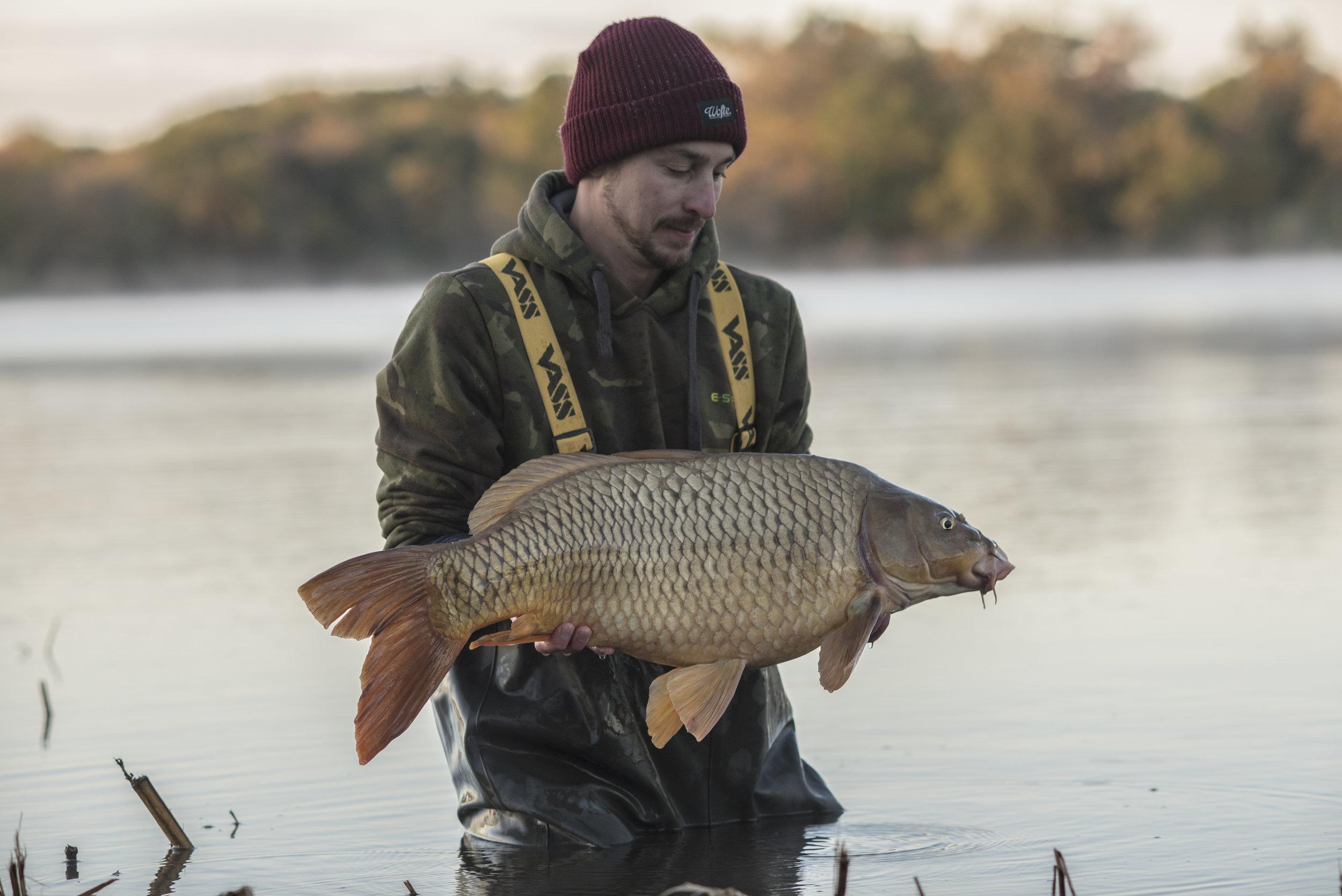 ANDREW fish WATER RELEASE SMILE STARBURST_SPLITFIN 2.jpg