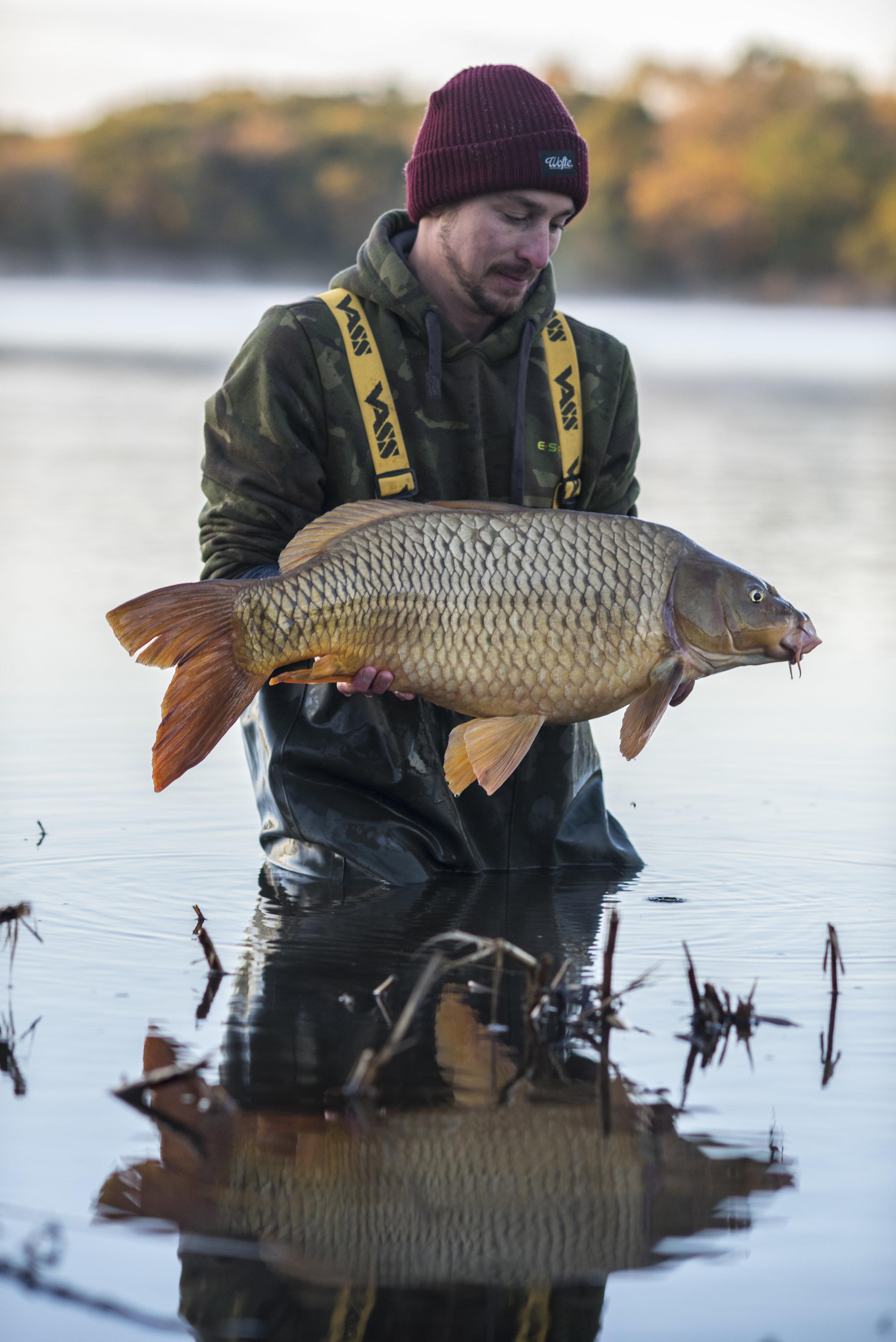 ANDREW fish WATER RELEASE SMILE STARBURST_SPLITFIN 3.jpg