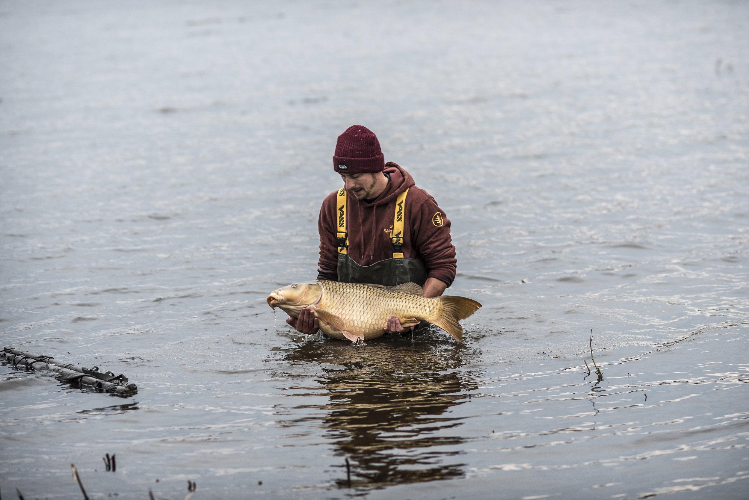 ANDREW SEMI SUBMERGE FISH WATER MAT 6.jpg