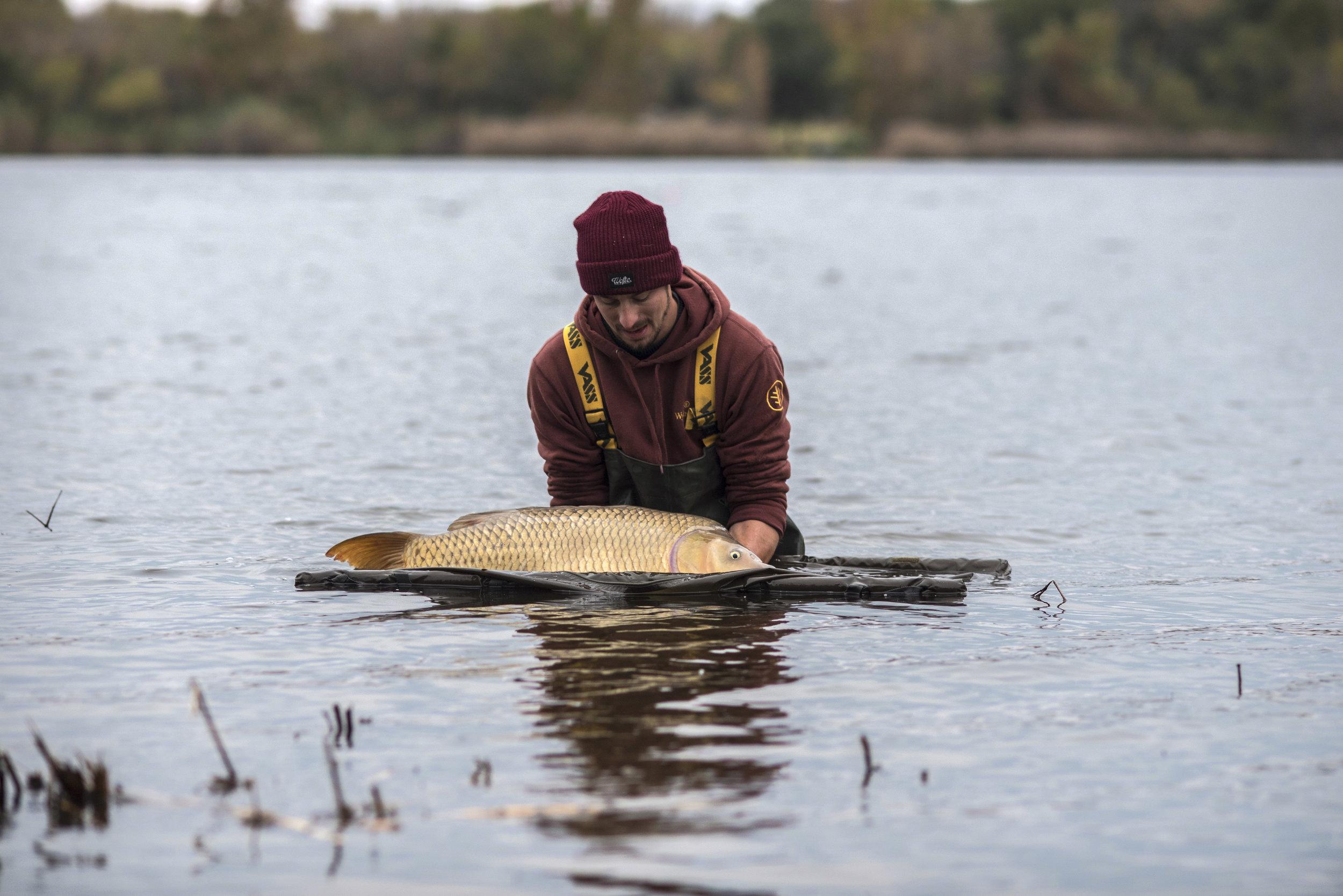 ANDREW SEMI SUBMERGE FISH WATER MAT.jpg
