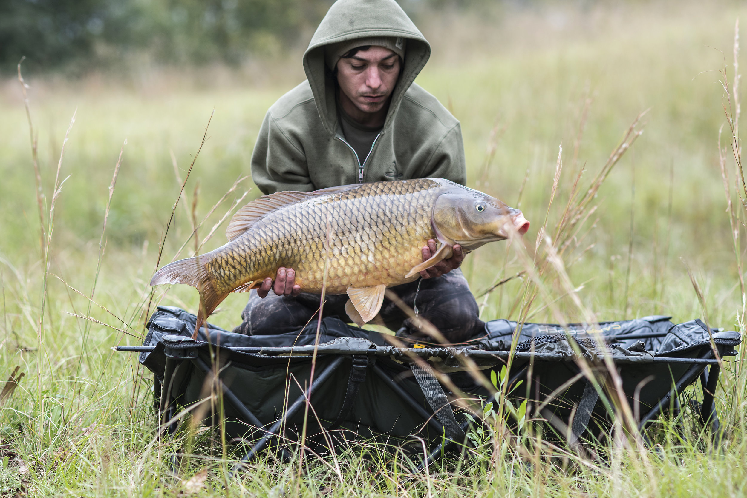 JOEY CROUCH CRdle FISH 1.jpg