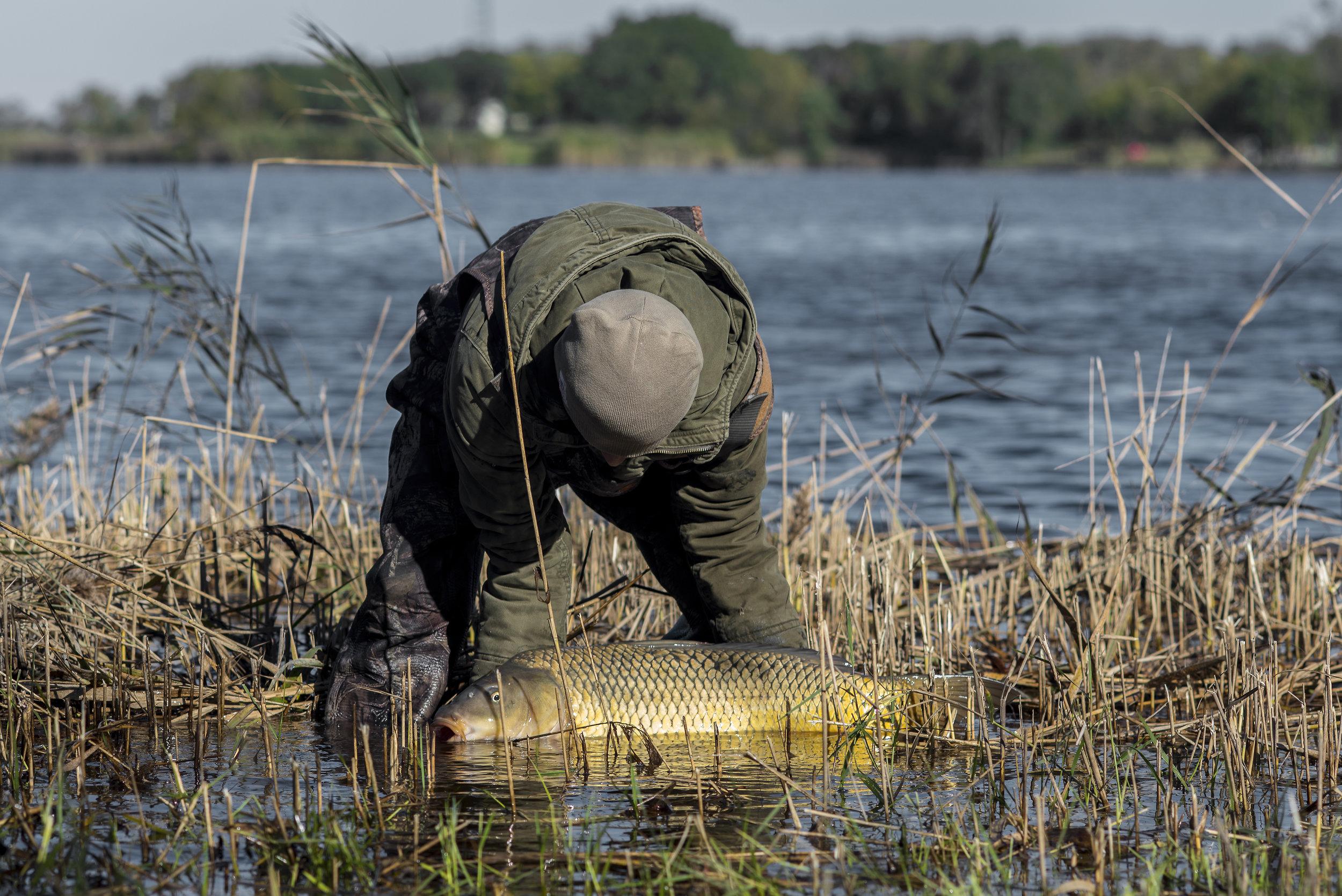 JOEY fish 1 LEFT SIDE 1_2 water.jpg
