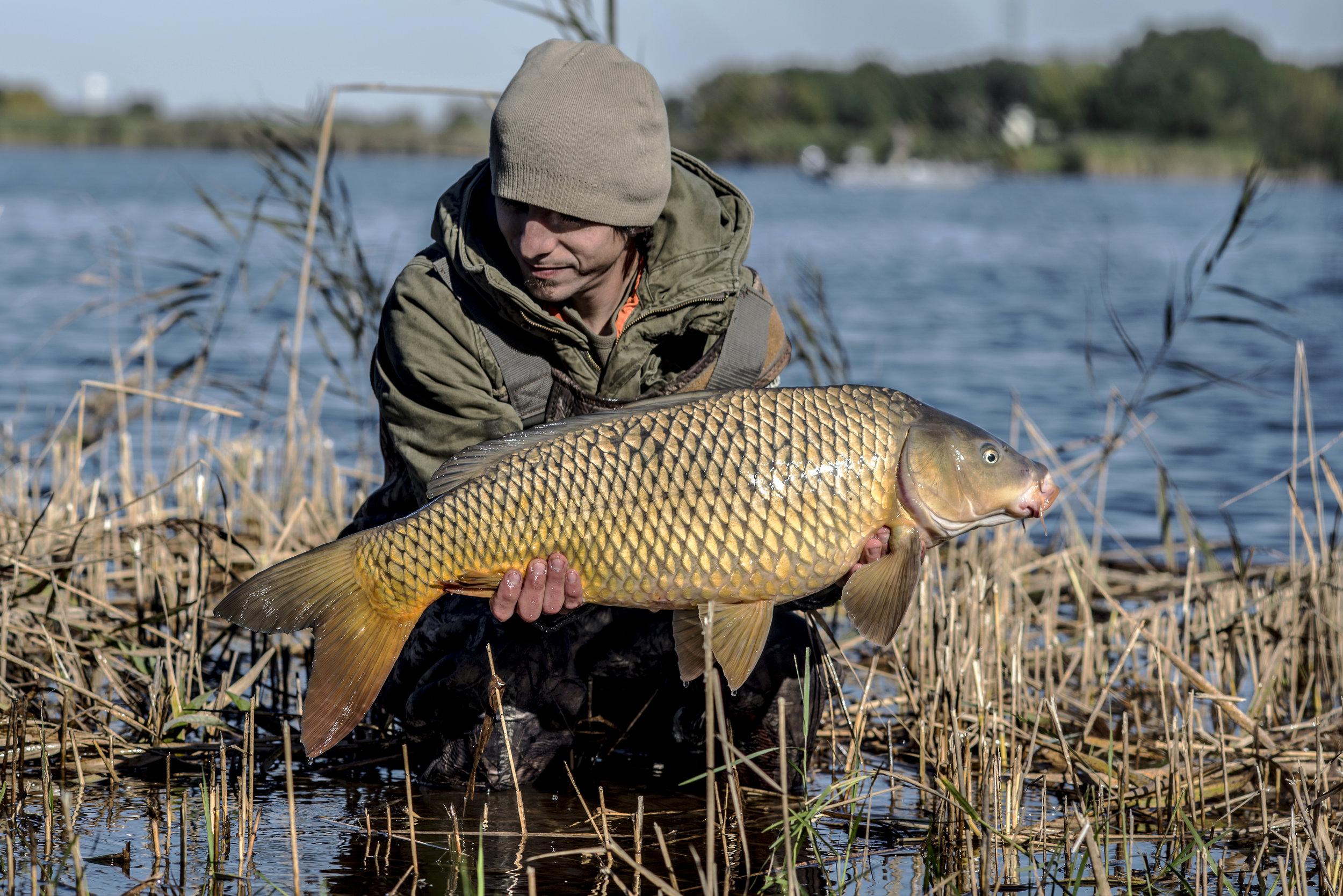 JOEY MONEY WATER  FISH RHS.jpg