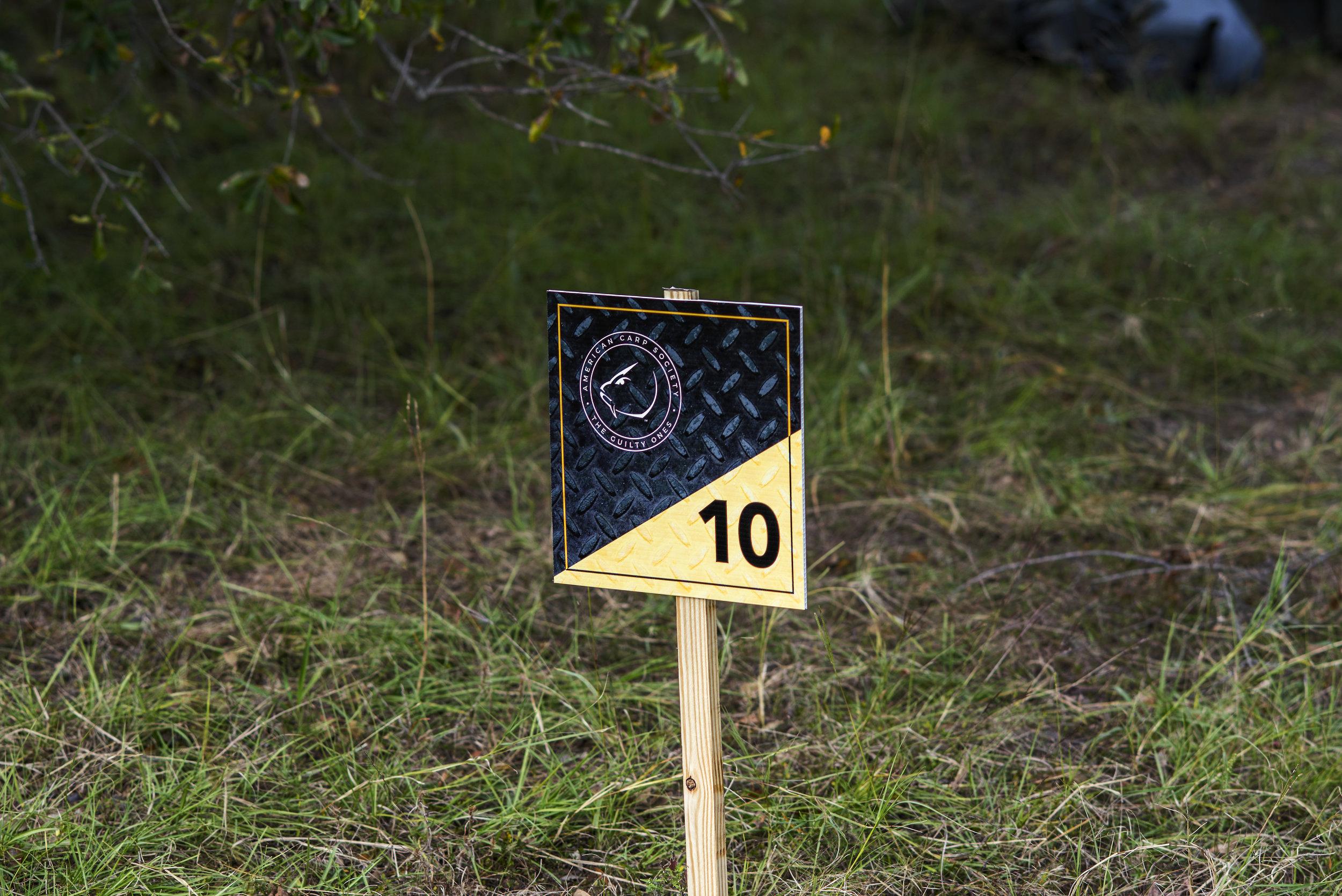 PEG 10 SIGN.jpg