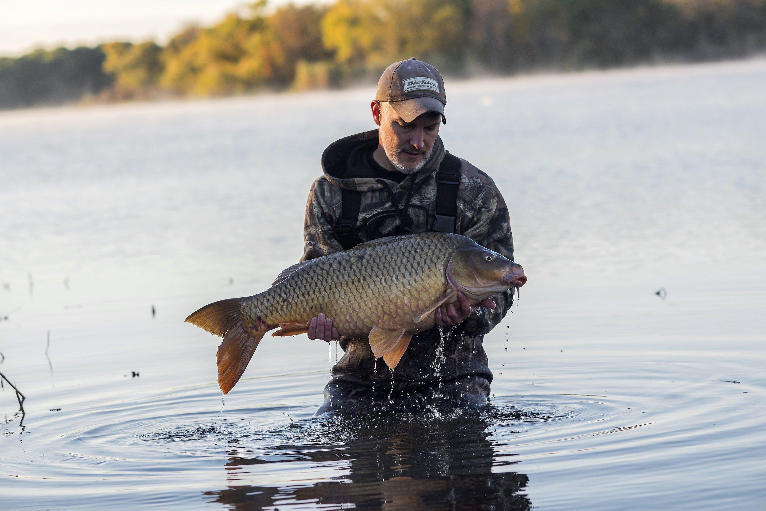Educating & Promoting Specimen Carp Fishing   American Carp Society    Membership Options