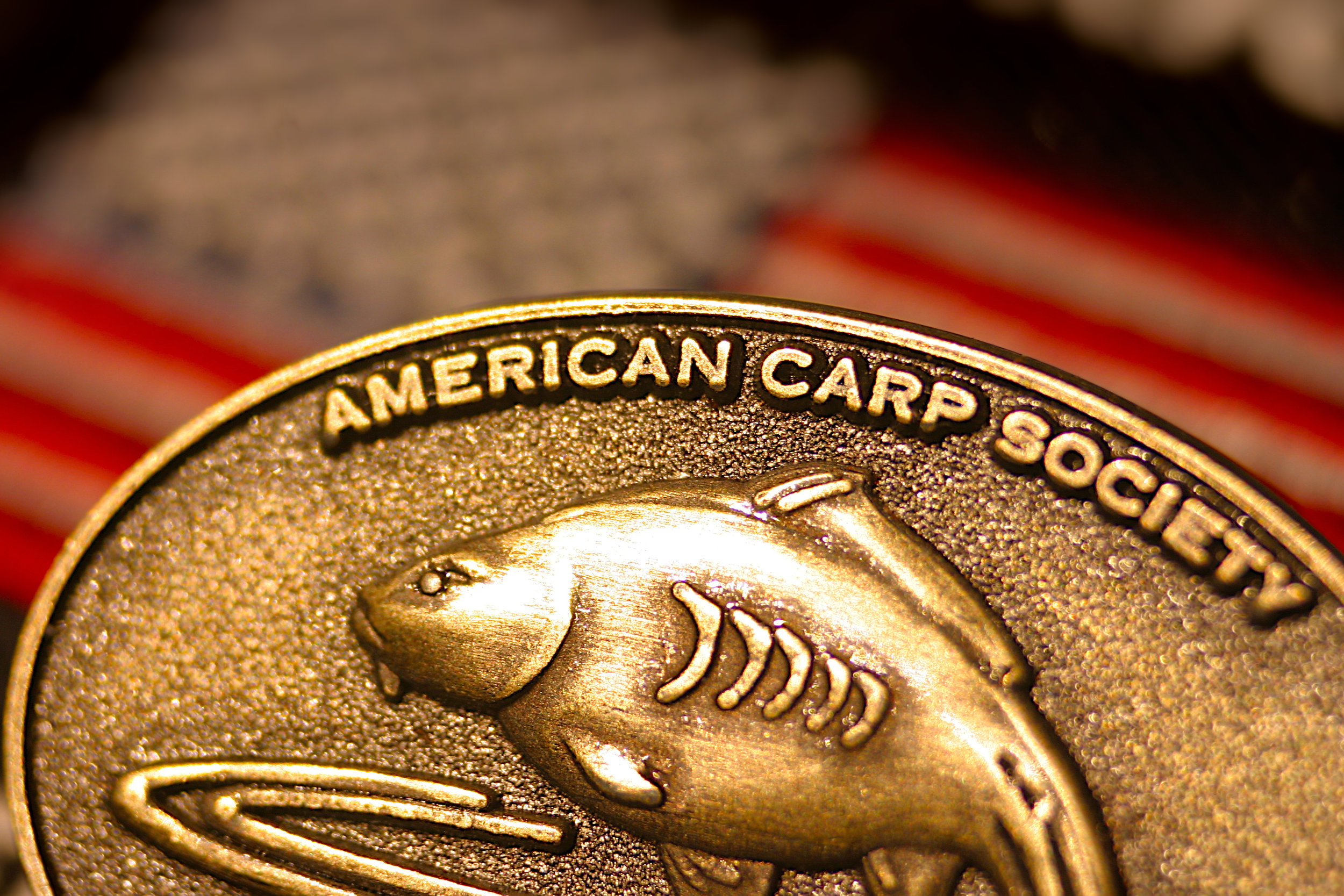 ACS Pin with Stars & Stripes-IMG_7879 copy.jpg