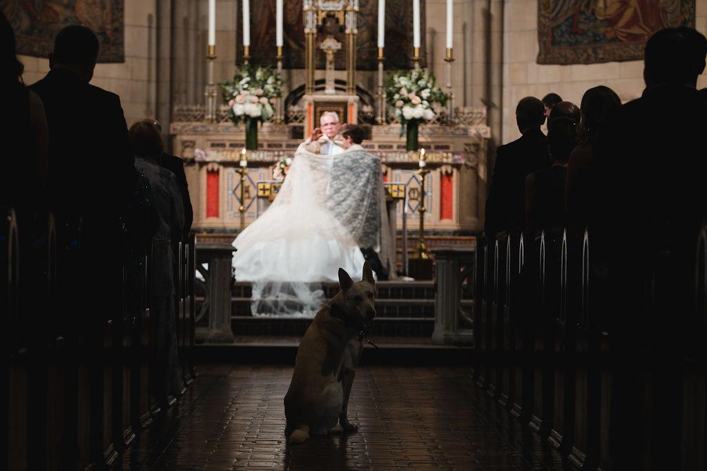 212_alex+kyle_wedding_by_Amber_Marlow.jpg