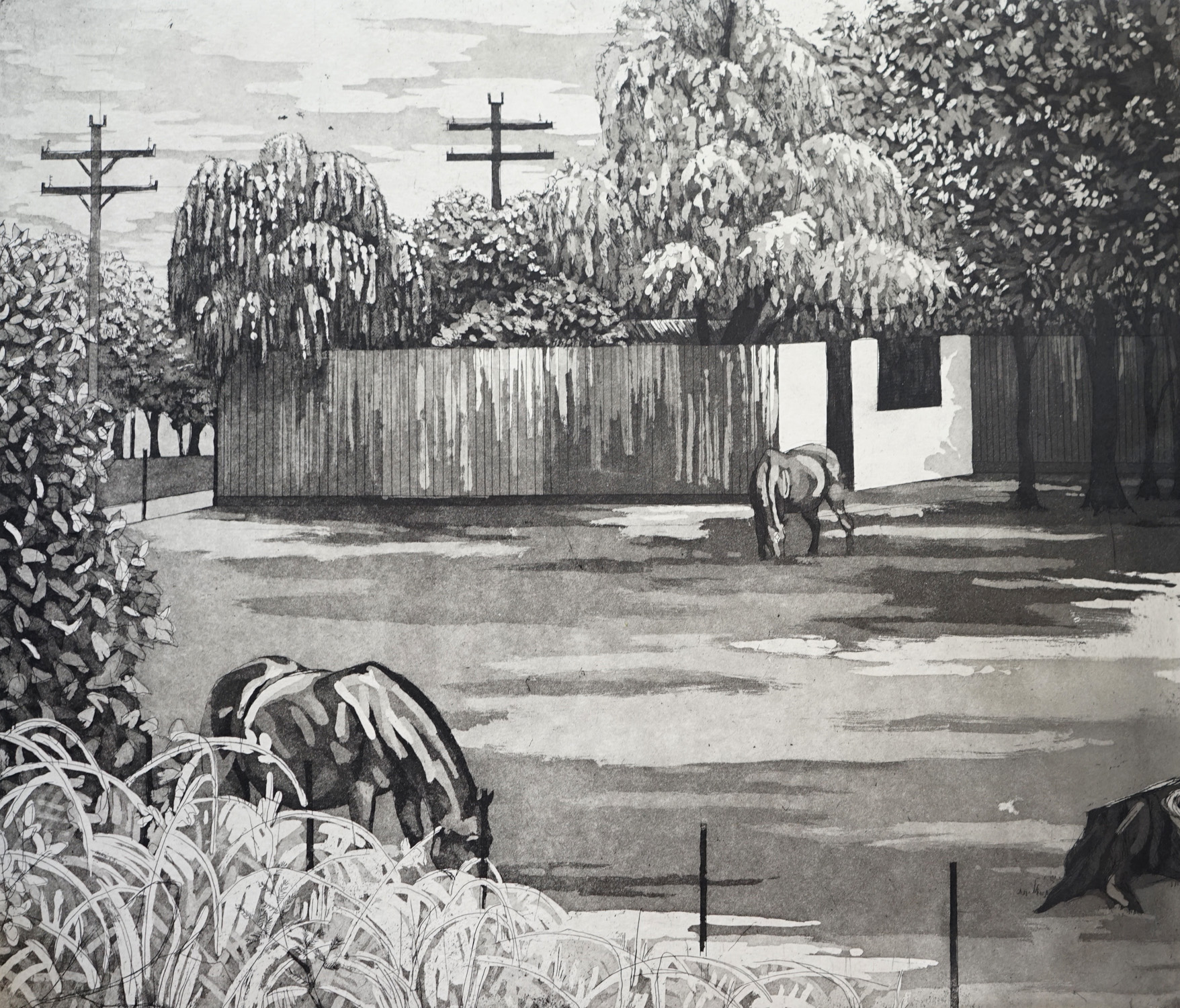 suburban pastoral3.jpg