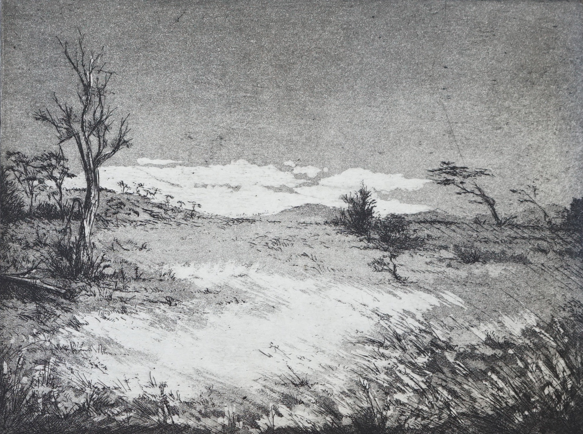 Etching on Hahnemuhle paper
