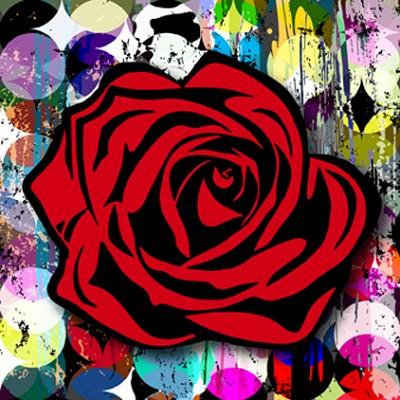 "Circle Grafitti Rose  48 x 48"""
